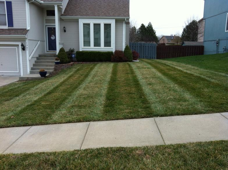 Lawn Striping - Photo-Gallery